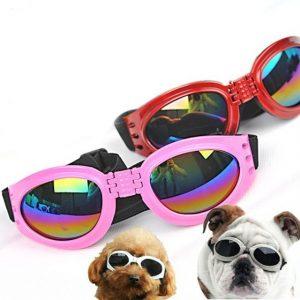 DOG-SUNGLASSES- online shop clicknorder.pk