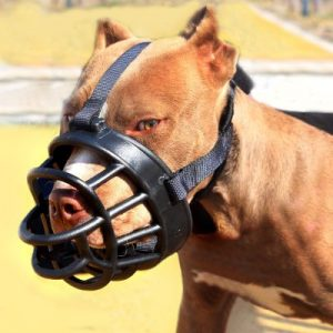 Dog Muzzle Soft Silicone Mouth Mask