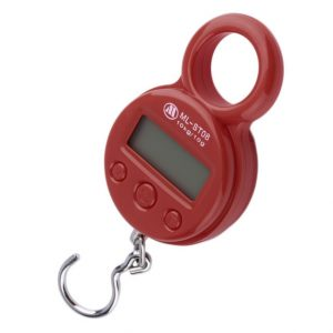 Mini 10Kg10g Portable LCD Display Luggage Fishing Hook Electronic Weight Digital Scale