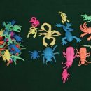 30 Pcs Bugs and Insects For Kids Growing In Water
