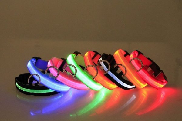 Glowing LED Dog Collar